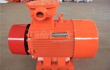 Shear Pump Motor